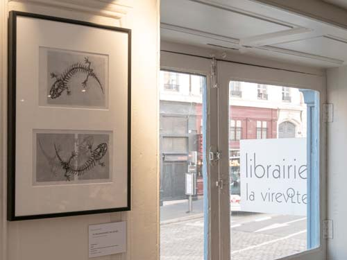 Exposition Structures Animales - La Virevolte